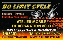 No Limit Cycle